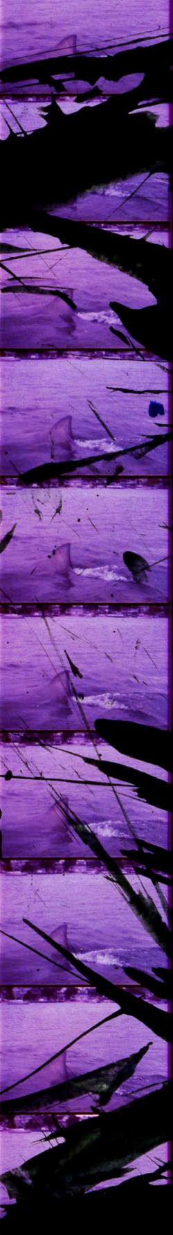 Heavy Metal Sharks Jaws 2 Filmstrip 1